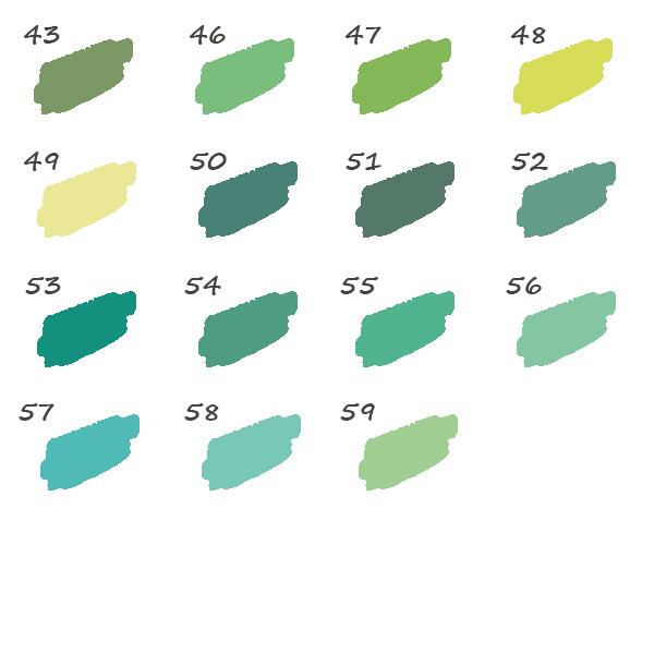 Pack de 15 Feutres Vert